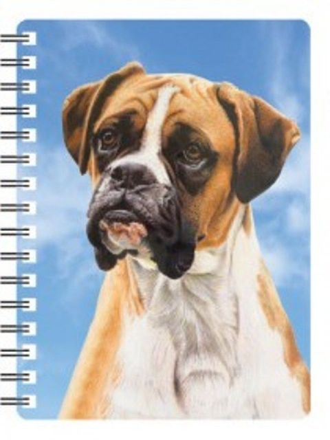Boxer 3D Notebook